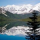Mountain Reflection with Lone Pine by shawntking