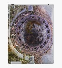 picture at an exhibition iPad Case/Skin