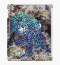 Bobtail Squid iPad-Hülle & Skin