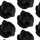 Black Rose by TinaGraphics