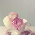 Ranunculus in a Teacup.  by Nicola  Pearson