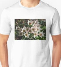 A Bunch of Miniature Tulips Celebrating the Spring Season T-Shirt