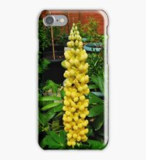 A Perfect Lupin iPhone Case/Skin