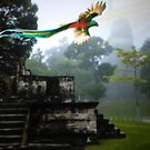 Quetzal over Tikal  by norakaren