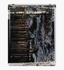 unreal forest - dark elves' view iPad Case/Skin