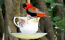 """""""Please join me for high tea?"""" by Elizabeth Kendall"""