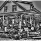 Antiques & Whimsy Monochrome by Wayne King