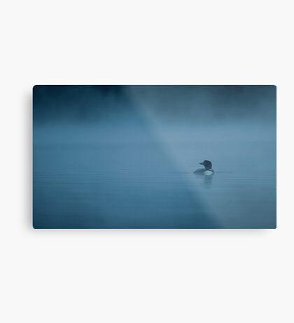 Common loon in blue fog Metal Print