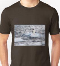Gentoo penguins (Pygoscelis papua) on Danco Island  Unisex T-Shirt