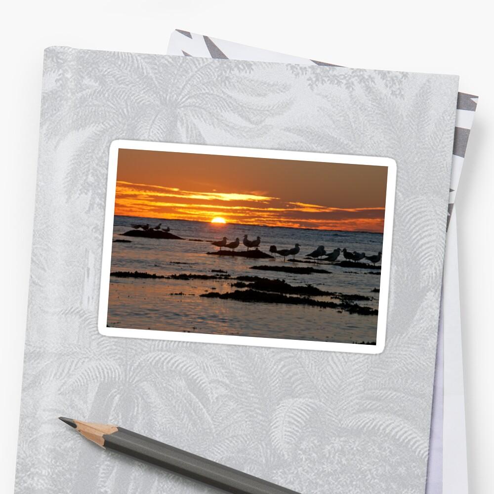 Sunset over Ningaloo by Erik Schlogl