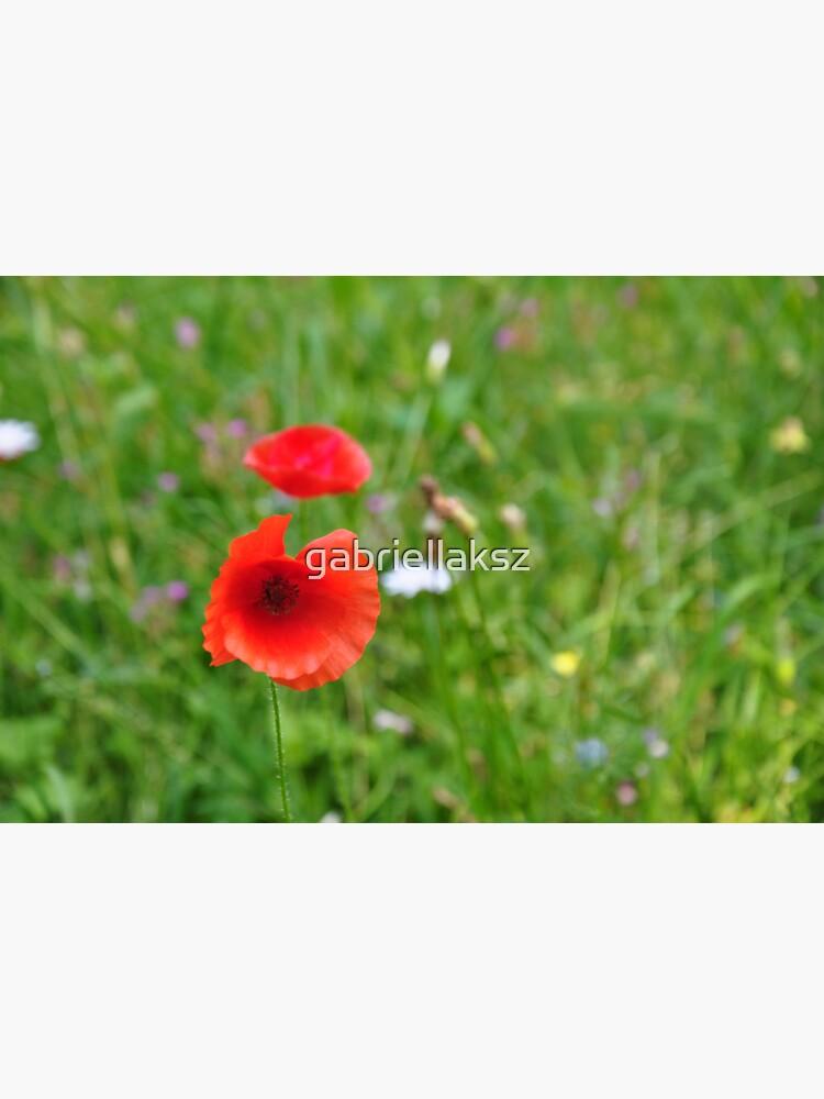 Poppy by gabriellaksz