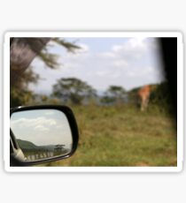 While watching a giraffe in Lake Nakuru Sticker