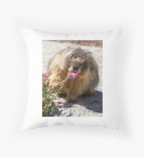 The marmot who inspects flowers Throw Pillow
