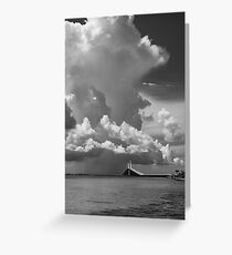 The  Black and white collection Greeting Card
