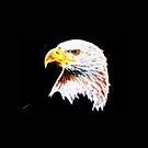 American Bald Eagle with Flag by Dave DelBen
