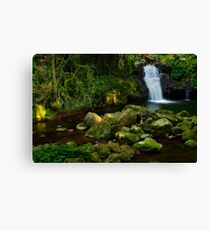 Little waterfall Canvas Print