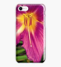 Flower 30 iPhone Case/Skin