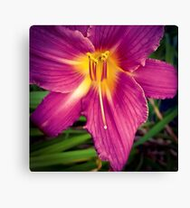 Flower 30 Canvas Print