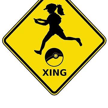 Trainer Xing by ftwyn