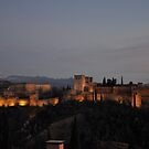 The Alhambra -Granada, Spain by gabriellaksz