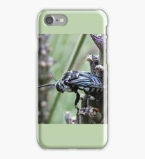 Cuckoo Bee iPhone Case/Skin