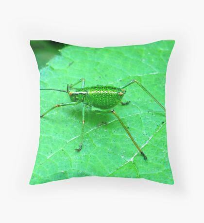 Green Bush Cricket Throw Pillow