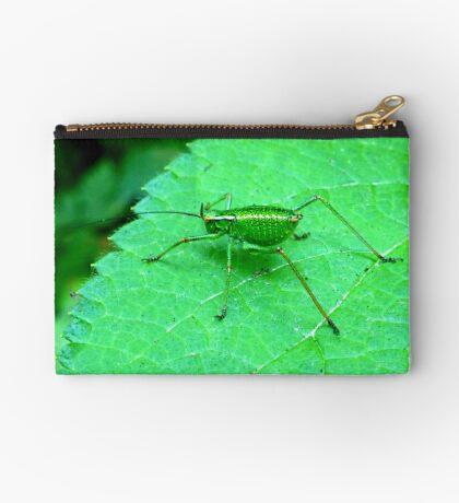 Green Bush Cricket Studio Pouch