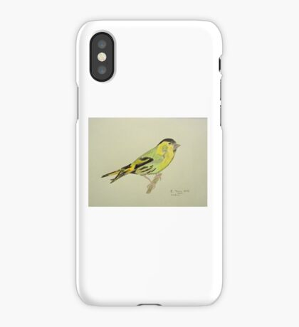 Siskin Drawing iPhone Case