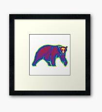 Heat Vision - Polar Bear Framed Print