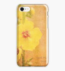Dark Mullein (Verbascum nigrum) flowers iPhone Case/Skin