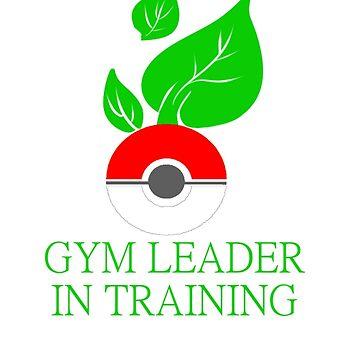 Gym leader in training by haru101