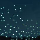 Fireflies by Sophersgreen