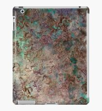 World View iPad Case/Skin