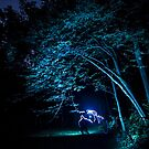 Arched tree with light paint by Sven Brogren