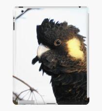 Yellow-tailed Black Cockatoo iPad Case/Skin