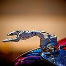 Dalmatian Radiator Cap by Bobby Deal