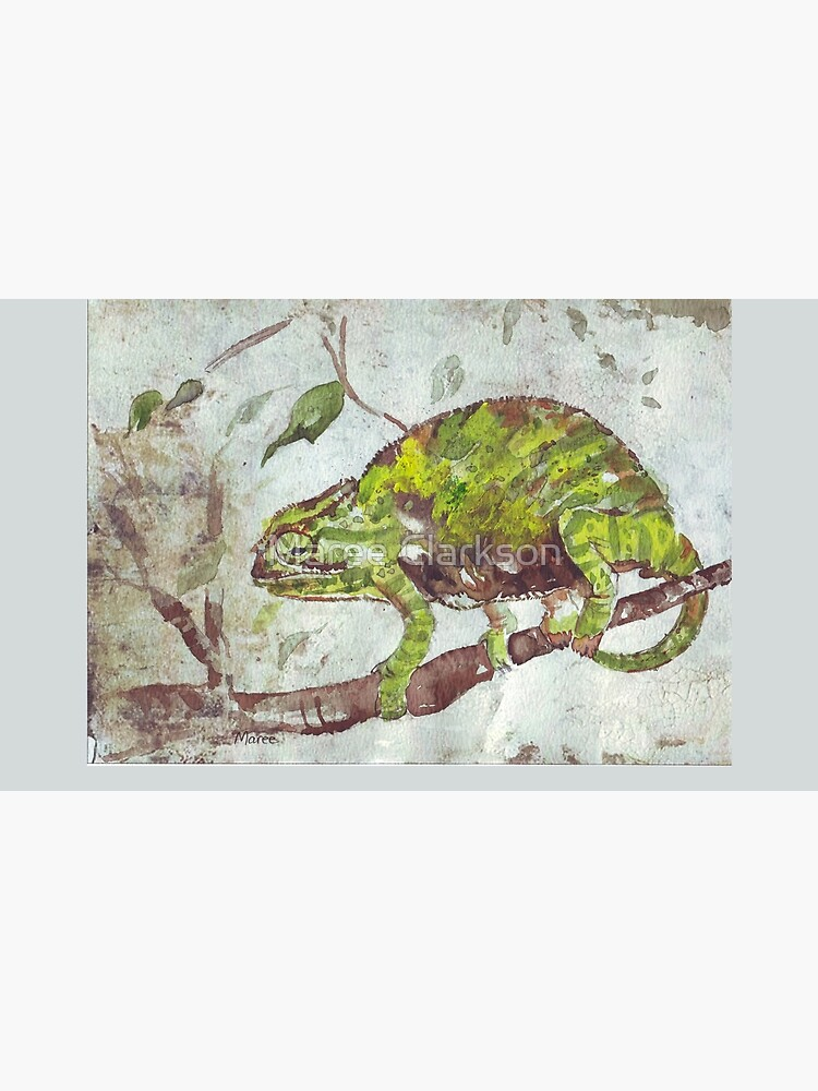 Chameleon (Chamaeleonidae) by MareeClarkson