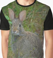 Sylvilagus Floridanus - Eastern Cottontail Rabbit With Sad Eyes | Kings Park, New York Graphic T-Shirt