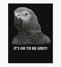 IT'S OK TO BE GREY Photographic Print
