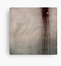 Downward Spiral  Canvas Print