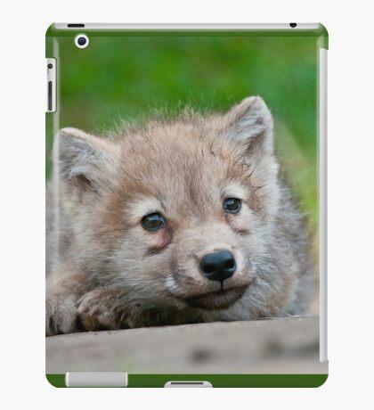 Arctic Wolf Pup iPad Case/Skin