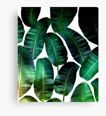Cosmic Banana Leaves #redbubble #lifestyle Canvas Print