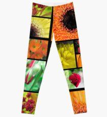 Macro Flowers Leggings