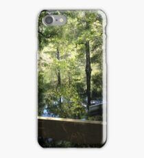 Flooded River iPhone Case/Skin