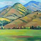 Barrington Tops ,NSW by Virginia McGowan