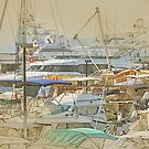 Boat harbour  by Murray Swift