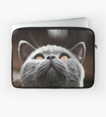 What Are you waiting for? Theres my chin Laptop Sleeve