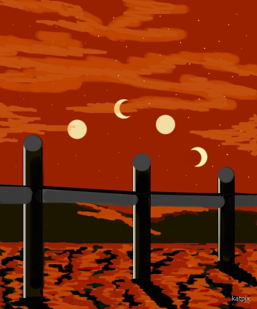 Fence Line by katpix