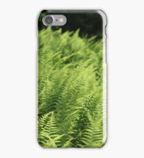 Brenner's Ferns 2016 iPhone Case/Skin