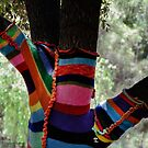 Stockings for the Well Dressed Tree!  by Heather Friedman